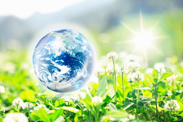 ekologie zemekoule